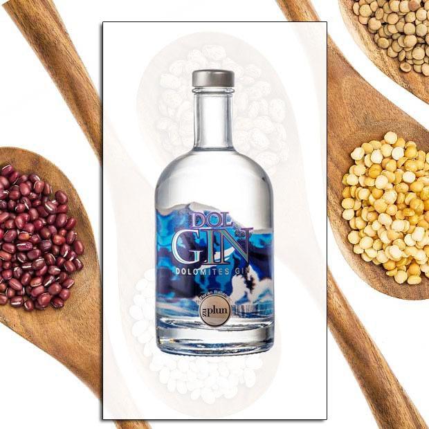 Dol Gin Kit