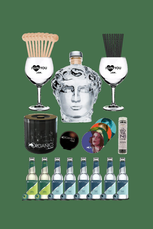 Gin David – Organics party kit