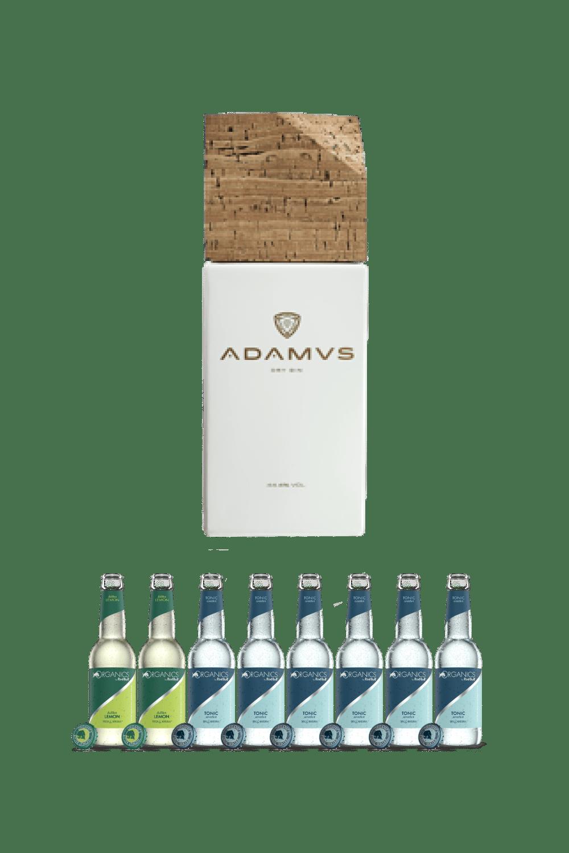 Adamus – La coppia perfetta