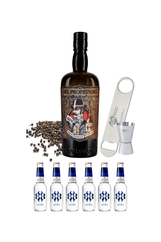 Partystarter – Gin Del Professore Monsieur