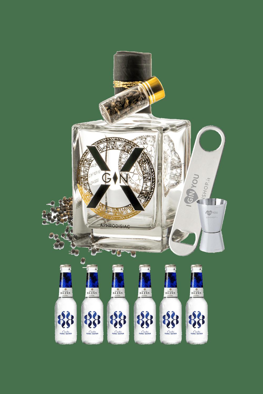 Partystarter – X-gin