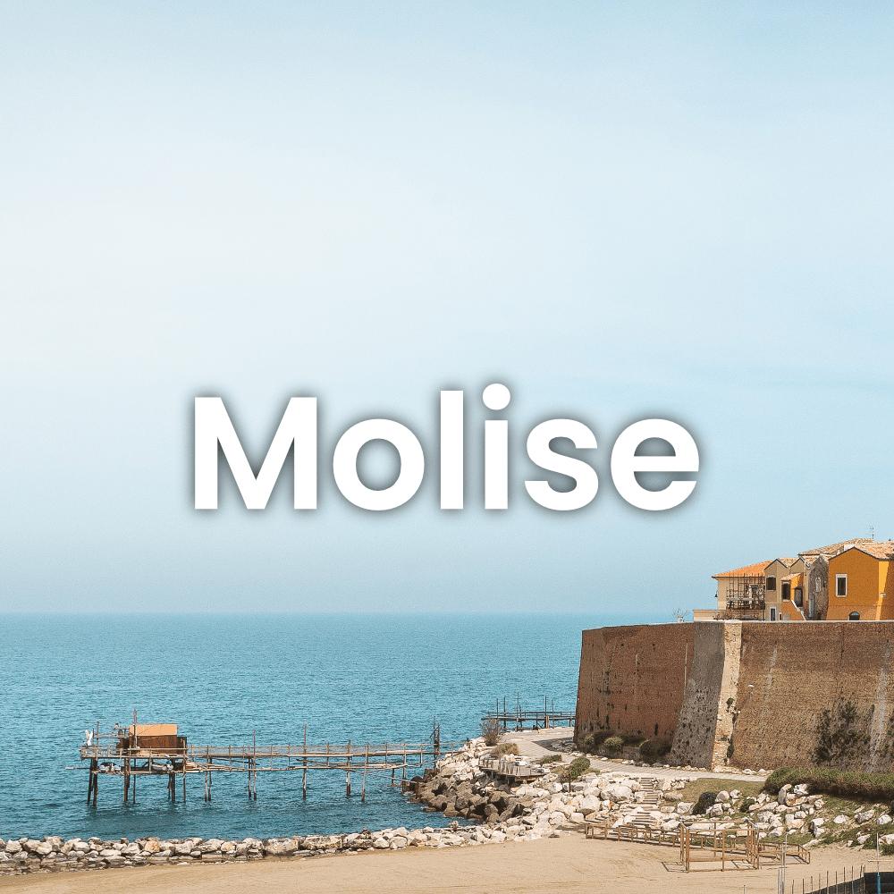 molise gin